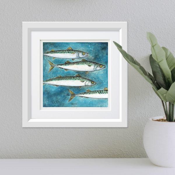 Mackerel framed