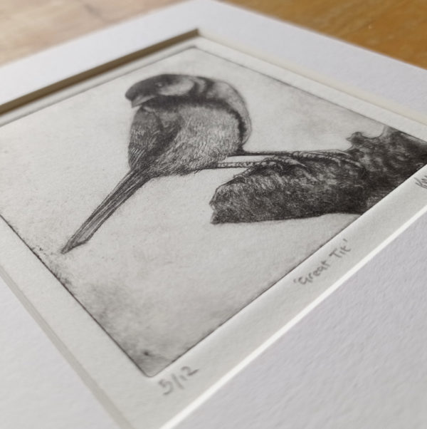 Great Tit Drypoint