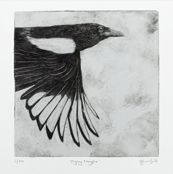 Flying Magpie Drypoint Print